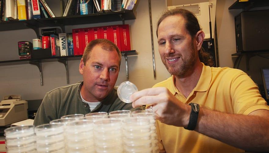 Dr. Kornfeld in research lab